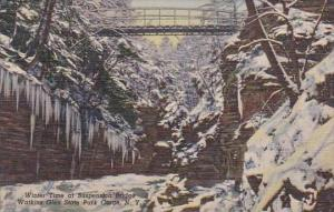 New York Watkins Glen State Park Gorge Winter Time At Suspension Bridge