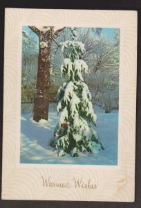 Folded Greeting Card Trees & Snow - Unused