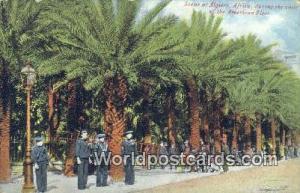 Algiers Algeria, Africa, American Fleet Algiers American Fleet