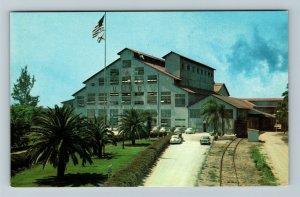 Clewiston FL-Florida, Sugar House Raw Sugar Plant Classic Cars Chrome Postcard