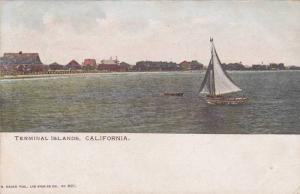 Sailing, Terminal Islands, California,  00-10s