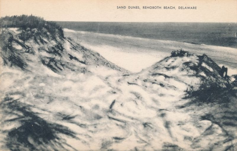 Rehoboth Beach DE, Delaware - Sand Dunes along the Atlantic Ocean