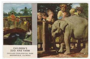 Baby Elephant Brookfield Zoo Chicago Illinois postcard