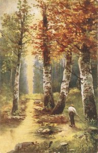 Man gathering wood in the forest Old vintage Austrian postcard
