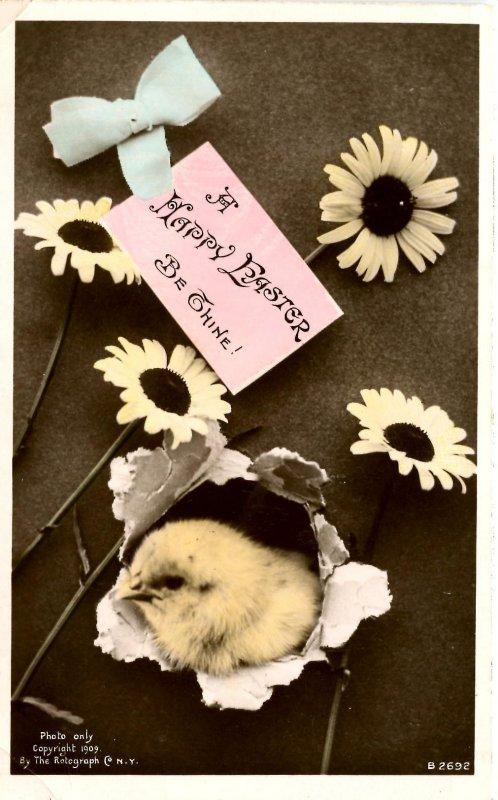 Greeting - Easter   (chicks)    *RPPC