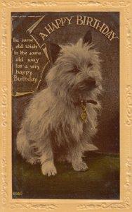 Happy Birthday , Dog , 00-10s