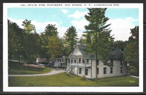 New York, Old Forge - State Fish Hatchery - Adirondack Mts -  [NY-396]