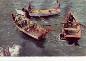 BOYS DIVING FOR COINS AT SANTA CATALINA ISLAND, CAL 1912 three rowboats & divers
