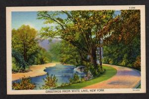 NY Greetings from WHITE LAKE NEW YORK Postcard Linen PC
