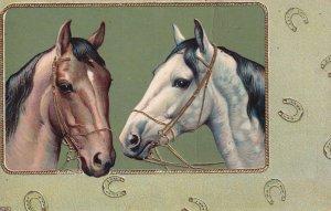 HORSES, 1900-1910