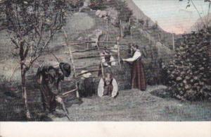 Farmers Working Crops