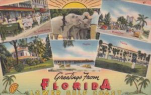 Florida Greetings From The Lower Gulf Coast 1958