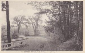Scene In Roscoe Conkling Park Utica New York Albertype