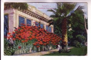 Poinsettas, Southern California, Van Ornum Colorprint Co