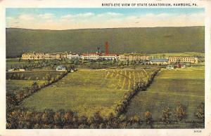 Hamburg Pennsylvania Birdseye View State Sanatorium Antique Postcard K15247