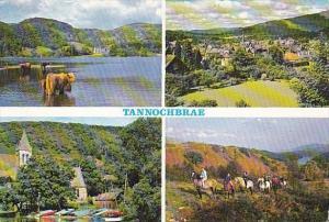 Scotland Fife Tannochbrae Multi View