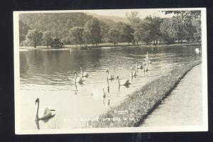 RPPC WHITE SULPHUR SPRINGS WEST VIRGINIA SWANS VINTAGE REAL PHOTO POSTCARD
