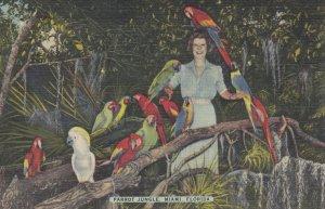 Florida Parrot , 1930-40s #5 (Miami)