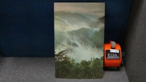 STD Vintage The Early Morning Mists Great Smokey Mountains National Park Tenness