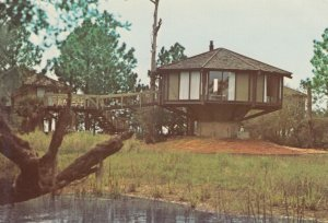 HILTON HEAD , South Carolina , 50-70s ; Tree Houses , Sea Pines Plantation