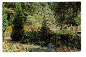Trees in Rock Gardens, Royal Botanical, Hamilton, Ontario