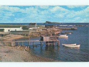 Pre-1980 BOAT SCENE Ferryland - Near Aquaforte Newfoundland NL AF3421