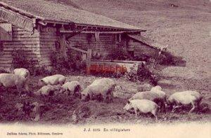 J. J. 3185 EN VILLEGIATURE, Jullien freres, Phot. Editeurs, Geneve