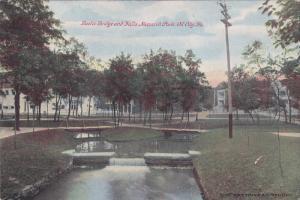 Rustic Bridge & Falls , Monarch Park , OIL CITY , Pennsylvania , PU-1909