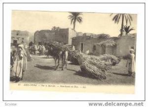 Sur le Marche, Sidi-Okba, Africa, 00-10s