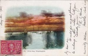 Elliot Bay Washington DC 1904