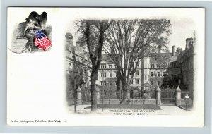 New Haven CT, Vanderbilt Hall, Yale University, Vintage Connecticut Postcard X32