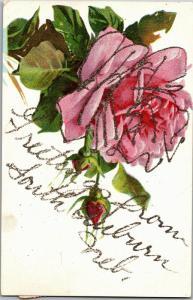 Greetings from South Auburn Nebraska Vintage Floral Rose Postcard N17