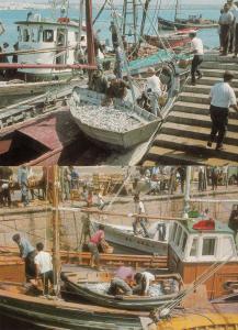 Algarve Sardine Fishing Loading 2x Portugal Postcard s