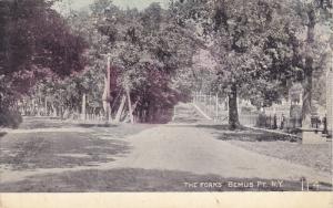 The Forks Benus Pt., New York, 00-10s