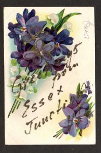 VT Greetings from ESSEX JUNCTION Jct VERMONT Postcard