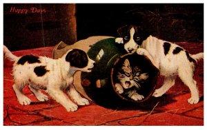 Dog ,  puppies rolling kitten in barrel
