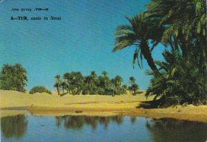 A-TUR , oasis in Sinai , Egypt (While Israel) , PU-1977