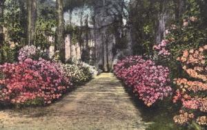 Wellesley Manor Savannah GA 1942