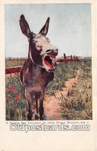 Native Son Laughing Postcard Post Card unused