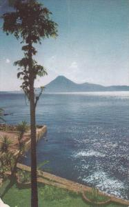 Tree & View Of LAKE ATITLAN, Guatemala, 1940-1960s