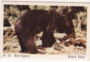Trade Card Dandy Gum Wild Animals H 12 Black Bear