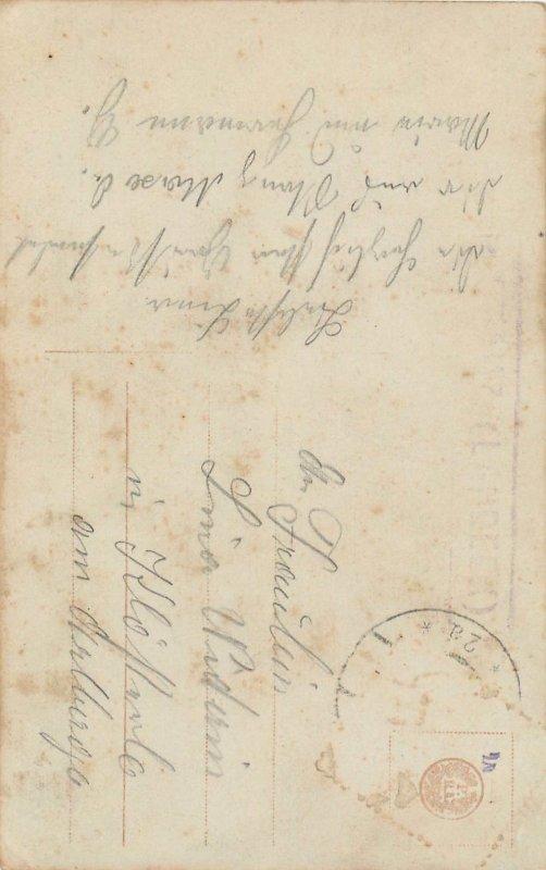 Elegant lady postal pigeon letter Vogel geflogen dove correspondence postcard