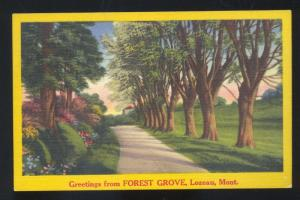 GREETINGS FROM FOREST GROVE LOZEAU MONTANA VINTAGE POSTCARD MONT.
