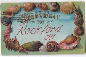 Shell Border, Rockford Ill