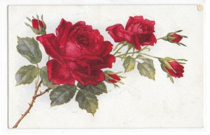 Beautiful Stem of Red Roses with Thorns and Buds Vintage Flower Postcard