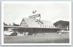 Pigeon Forge Tennessee~Green Pigeon Steak Restaurant~Rooftop Bird~Early 1950s