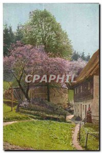 Postcard Old Scene in the pastures Switzerland
