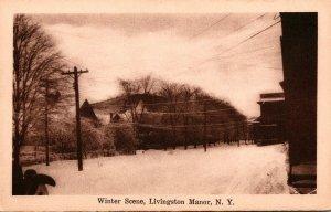 New York Livingston Manor Winter Scene