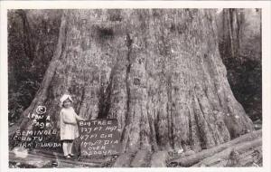 Florida Orlando Big Tree Park Oldest Cypress Tree Real Photo RPPC