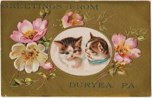 1907 Greetings From Duryea PA Pittston Luzerne Cats Kittens Embossed DB Postcard